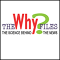 The Why? Files