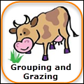 grouping-and-grazing