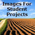 Safe Images For Student Projects